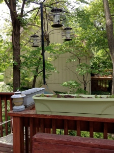 Squirrel=proof bird feeders and flower boxes