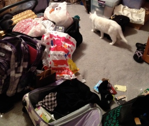 My daughter's room in the middle of the packing mess.