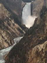 The amazing Yellowstone Waterfall.