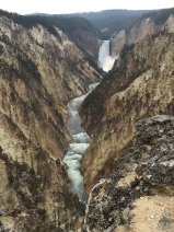 The Yellowstone River flows in the Grand Canyon of Yellowstone.